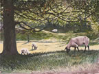 painting of sheep grazing in a field