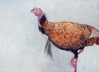 painting of a golden turkey